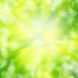 Зеленая текстура предпосылки света конспекта bokeh Стоковая Фотография