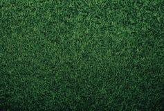 Зеленая текстура травы предпосылки чувствовала обои Нового Года стоковое изображение rf