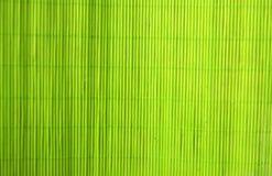 зеленая текстура Стоковая Фотография