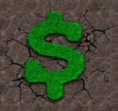 Зеленая трава в форме знака доллара на предпосылке почвы Стоковая Фотография