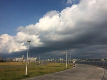 Зеленая трава и шторм Стоковые Изображения RF