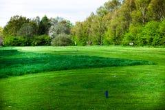 Зеленая трава на полях гольфа Концепция с полем спорта Взгляд ландшафта поля для гольфа с деревьями на заднем плане Красивый gr стоковая фотография rf