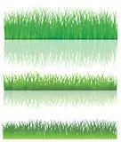 Зеленая трава. иллюстрация вектора