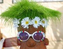 зеленая травы Стоковое фото RF