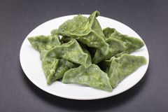 Зеленая тусклая сумма, китайская еда Вареники с мясом говядины или картофельными пюре или творогом в тесте с spirulina Стоковое Изображение