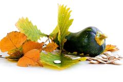 Зеленая тыква на таблице Стоковая Фотография RF