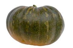 зеленая тыква стоковая фотография