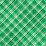 зеленая шотландка Стоковые Фотографии RF