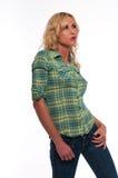 зеленая шотландка Стоковое Фото