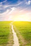 зеленая дорога лужка Стоковые Фотографии RF