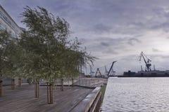 Зеленеть пристань с деревьями и сумерк на пляже в городе rhus Ã… стоковые фото