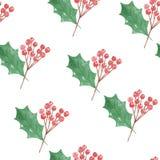 Зеленого цвета рождества праздников ягод падуба акварели картина красного безшовная Стоковые Изображения RF