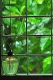 Зеленое влияние стоковое фото rf