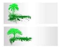 Зеленое знамя дерева природы Стоковое Изображение