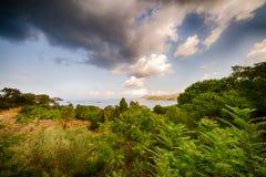 Зеленое море природы и син в Эльбе стоковые изображения