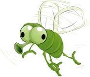 Зеленое насекомое Стоковые Изображения