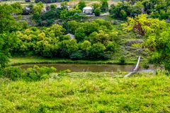 Зеленое озеро около домов и деревьев Стоковая Фотография