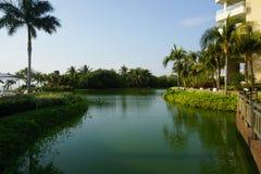 зеленое озеро Стоковое Изображение RF