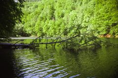 Зеленое озеро Hamori в Lillafure около Miskolc, Венгрии Ландшафт весны с sunrays покрывая горы Солнечный путь стоковая фотография rf