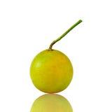 зеленое отражение апельсиновой корки Стоковое Фото