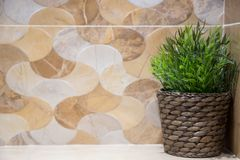 Зеленое пластиковое дерево помещенное в bathroom стоковые фотографии rf