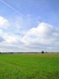 Зеленое поле в сельской местности стоковое изображение