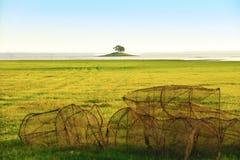 зеленое поле и малое река середины острова Стоковая Фотография RF