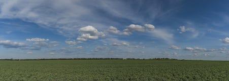 Зеленое поле около авиапорта в Праге Стоковые Фото