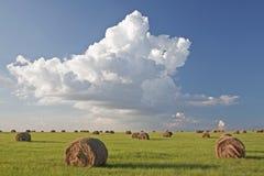 Зеленое поле сбора с связками корма и облаками грома стоковые изображения