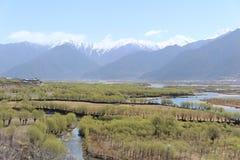 Зеленое поле с предпосылкой горы снега Стоковая Фотография