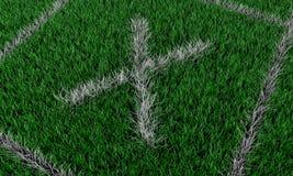 Зеленое поле Стоковое Изображение