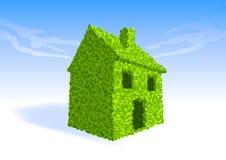 зеленое прожитие дома иллюстрация штока