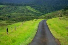 зеленое путешествие Стоковые Изображения RF