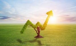Зеленое растение в форме растет вверх тенденция на поле бесплатная иллюстрация