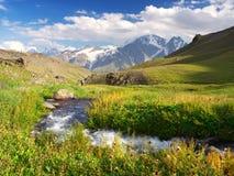 зеленое река лужка Стоковые Фото