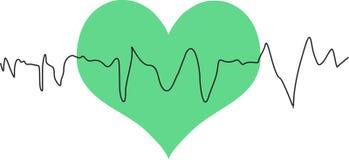 Зеленое сердце стоковые фото