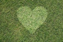 Зеленое сердце Стоковое Изображение