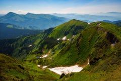 Зеленое ущелье горы Стоковые Фото
