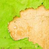 зеленое шелушение краски Стоковые Изображения