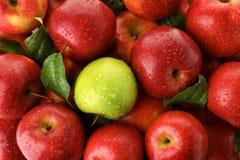 Зеленое яблоко среди красных одних как предпосылка стоковые фотографии rf