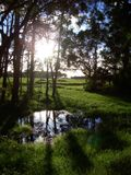 зеленое idyl Стоковое Изображение RF