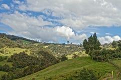 Зеленое Lanscape и небо стоковое фото