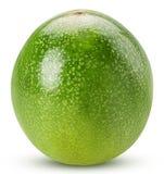 Зеленое Passionfruit Стоковое Изображение