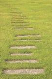 зеленое pathwalk Стоковое Изображение