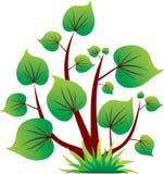 зеленой изолированный иконой вал листьев Стоковая Фотография RF