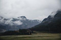 Туман покрывая леса горы Зеленые атмосферические горы стоковые изображения
