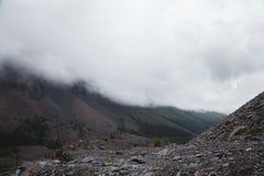 Туман покрывая леса горы Зеленые атмосферические горы стоковое фото rf