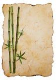 Зеленые бамбуковые заводы на старой предпосылке коричневой бумаги иллюстрация вектора