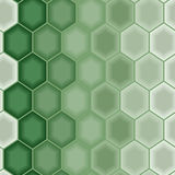 зеленые безшовные обои Стоковое Изображение