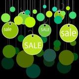 зеленые виньетки вектора Стоковая Фотография